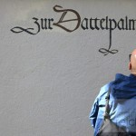 19_St. Gallen_Dattelpalme
