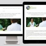 Website, responsive